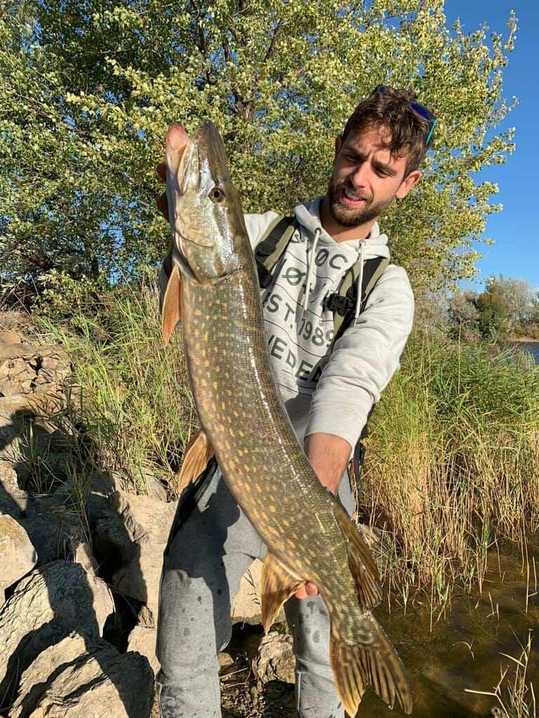 astuces pour pêcher le brochet